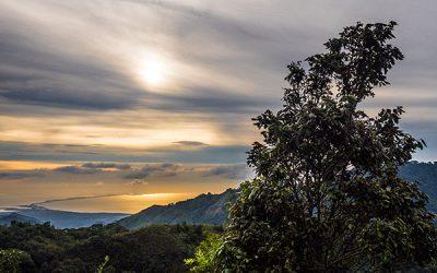 Red Ecolsierra presta servicios de maquila a caficultores de la región